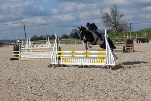 A weekend of horsejumping success and PBs!