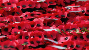 Remembrance Service Preparation