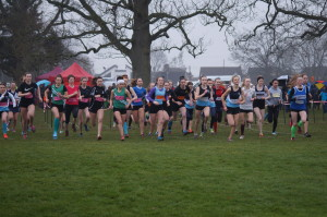 Netball and Cross Country Success!