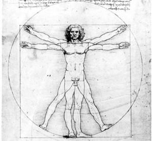 Leonardo da Vinci and the Anatomical Art World