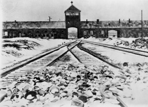 Why is the study of the Holocaust so important?