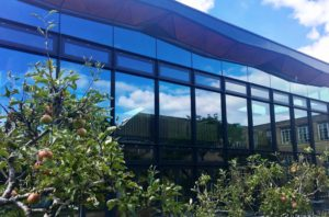 Our new Library and Garden – why they are so important