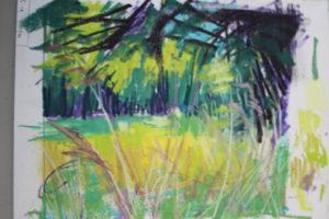 Girls enjoy Workshop with Landscape Artist