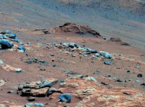 Treats & Beats: Life on Mars